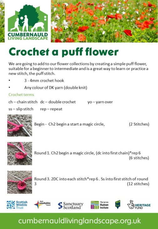 Crochet a puff flower