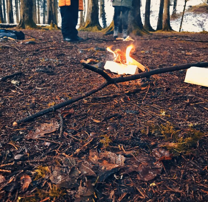 A small bonfire in the woods